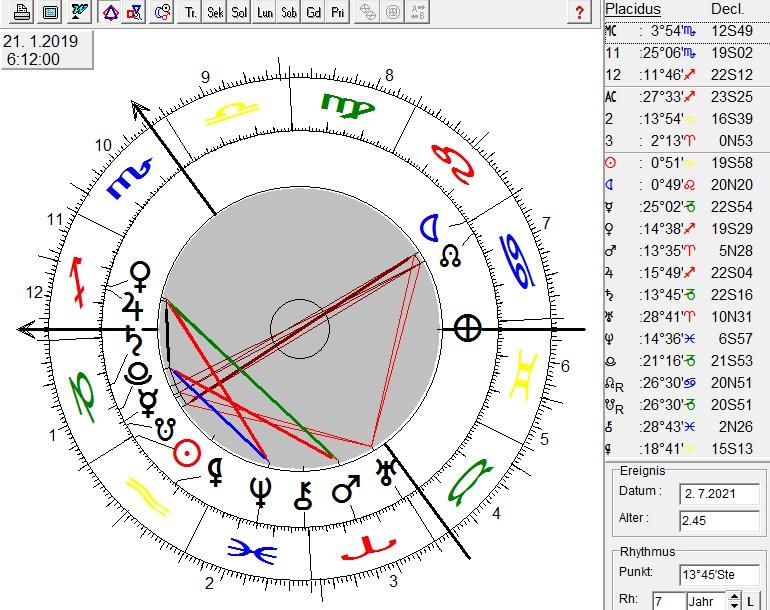 Horoskop der Mondfinsternis im Löwen Januar 2019